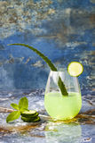 Sparkling cucumber mint gin and tonic fizz with aloe vera on marble table. Copy space. Dragon tail cocktail for fans party. Stock Images