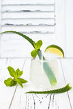 Sparkling cucumber mint gin and tonic fizz with aloe vera on rustic table. Copy space. Dragon tail cocktail for fans party. Stock Images