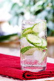 Sparkling Cucumber Water. A refreshing drink of sparkling cucumber water royalty free stock images
