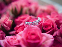 Sparkling diamond engagement ring in one of small pink roses great for valentines Royalty Free Stock Image
