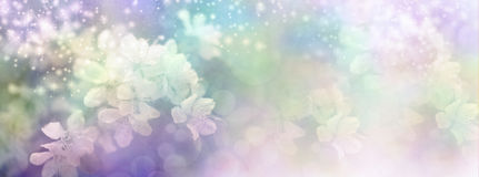 Sparkling Fairy Blossom Banner Stock Photos