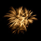 Sparkling Firework Royalty Free Stock Image