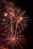 Sparkling Fireworks royalty free stock images