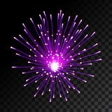 Sparkling fireworks Royalty Free Stock Photo
