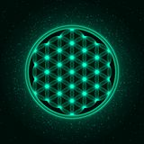Sparkling Flower of Life. Dark background with shiny particles. Vector, EPS 10 stock illustration
