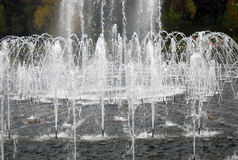 Sparkling fountains in Tsaritsyno park royalty free stock image