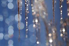 Sparkling icicles in winter Stock Photos