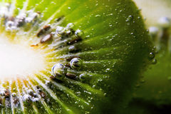 Sparkling Kiwi. Fruit in fizzy bubbling water. Great for wellness, nutrition, fitness, and health materials. Would also make a great background stock photography