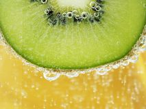 Sparkling kiwi Royalty Free Stock Photos