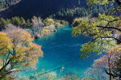 Sparkling lake in Jiuzhaigou Stock Photos