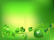 Sparkling leaves. Beautiful bright green leaves illustration. Beautiful harmonic colors. Realistic shining water drops