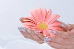 Sparkling manicure with pink flower Stock Images