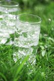 Sparkling mineral water with icecubes Royalty Free Stock Photos