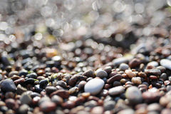 Sparkling pebbles on a beach. Sparkling wet pebbles on a beach Royalty Free Stock Photography