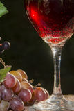 Sparkling Red Wine Royalty Free Stock Photo