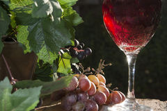 Sparkling Red Wine Stock Photo