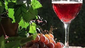 Sparkling Red Wine stock footage