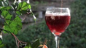Sparkling Red Wine stock video footage