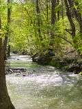Sparkling river Royalty Free Stock Images