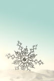 Sparkling snowflake in the snow Royalty Free Stock Photos