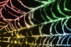 Sparkling Spider Web Stock Photo