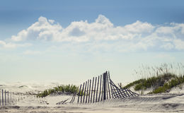 Free Sparkling Sunny Day At The Beach Royalty Free Stock Photo - 77815915