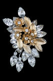 Sparkling vintage brooch Stock Photography