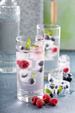 Sparkling water with berry and herb ice Royalty Free Stock Photo