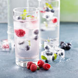 Sparkling water with berry and herb ice Royalty Free Stock Images
