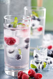 Sparkling water with berry and herb ice Royalty Free Stock Image
