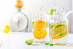 Sparkling water with citrus fruits and mint leaves Royalty Free Stock Photography