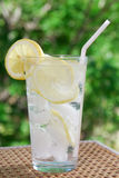 Sparkling water with lemon Stock Images