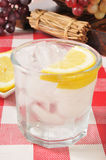 Sparkling Water with Lemon Royalty Free Stock Photos