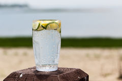 Sparkling water with lemon and lime Stock Photos