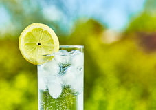 Sparkling water and lemon slice. On glass with an ice, sunny day - narrow focus on middle of the glass royalty free stock photos
