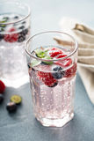 Sparkling water with raspberries and blueberries Royalty Free Stock Image