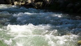 Sparkling water of a river stock video