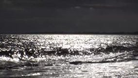 Sparkling waves is shining on a sunny summer day. Black and white theme stock footage