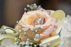 Sparkling wedding ring in pink and orange rose Royalty Free Stock Images