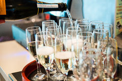 Sparkling whine  glasses. champagne Royalty Free Stock Photos