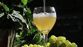 Sparkling White Wine stock video
