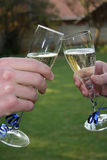 Sparkling Wine. Let us drink to it stock photo