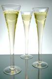 sparkling wine Arkivbilder