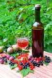 Sparkling wine and berries Royalty Free Stock Photography