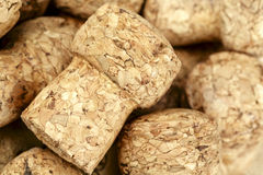Sparkling wine bottle cork. Shown close up against background to other corks Royalty Free Stock Image