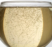 Sparkling wine - Champagne. Sparkling wine of Champagne or Spumante in a glass Stock Photo