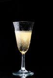 Sparkling wine glass Stock Photos