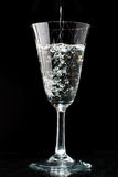 Sparkling wine glass Royalty Free Stock Image