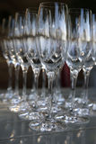 Sparkling Wine Glasses Stock Images