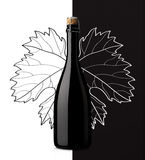 Sparkling wine with grape leaf on white and black background Stock Photography